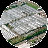 Kientzler GmbH Et Co. KG